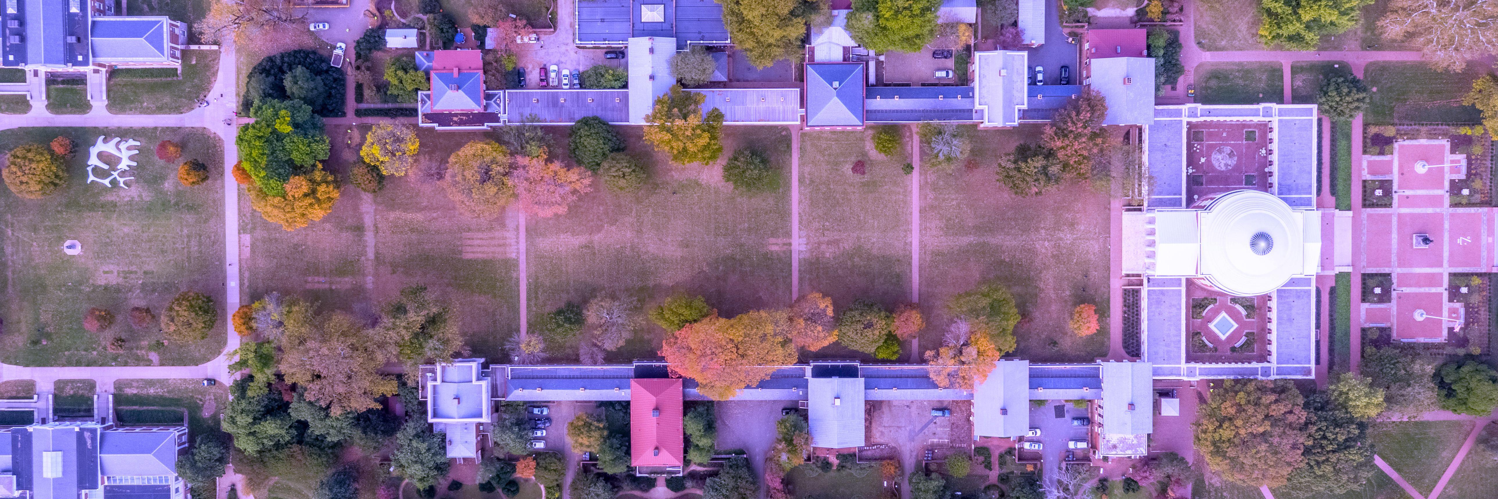 Lawn Aerial