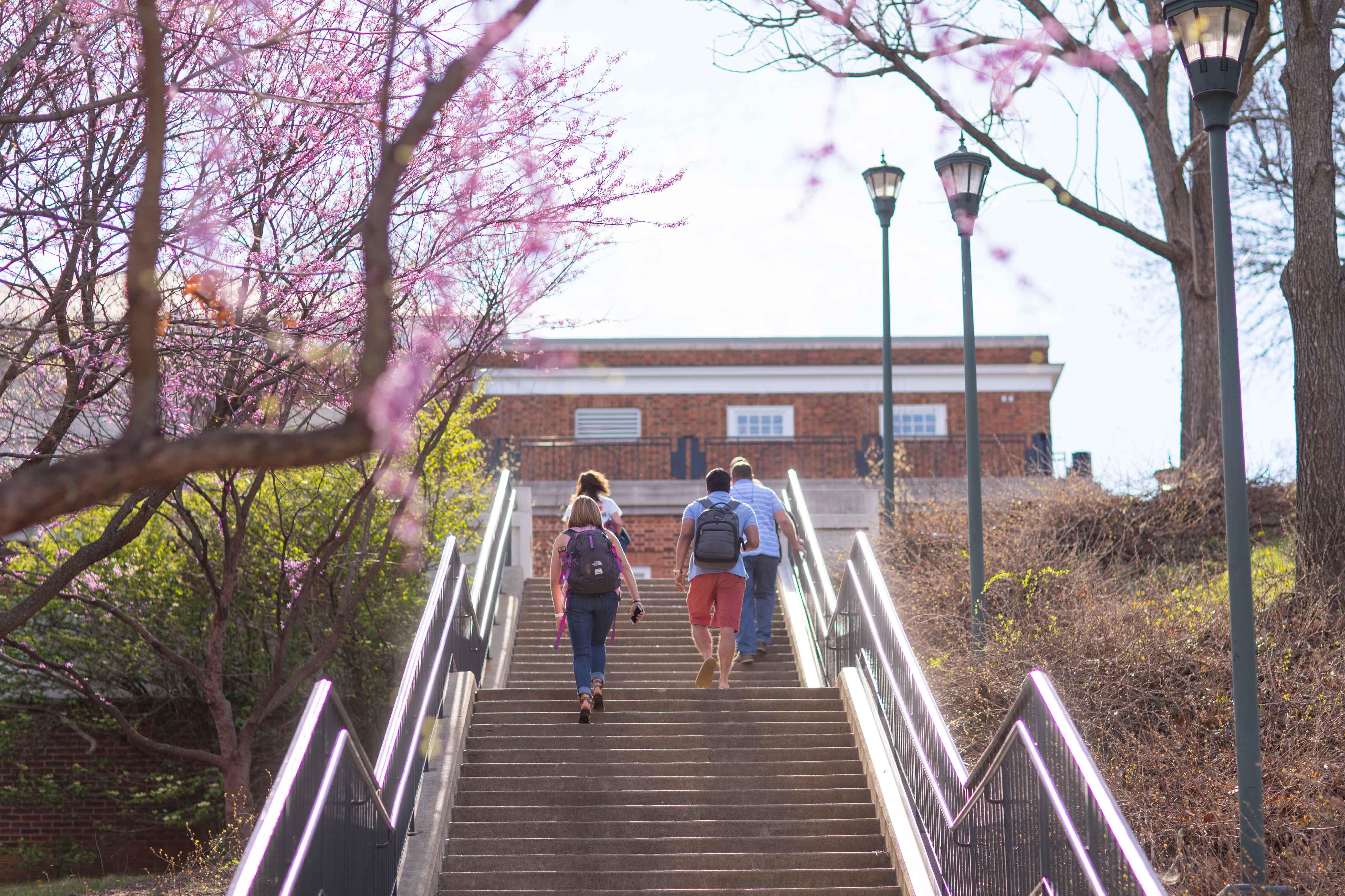 Students walking outside