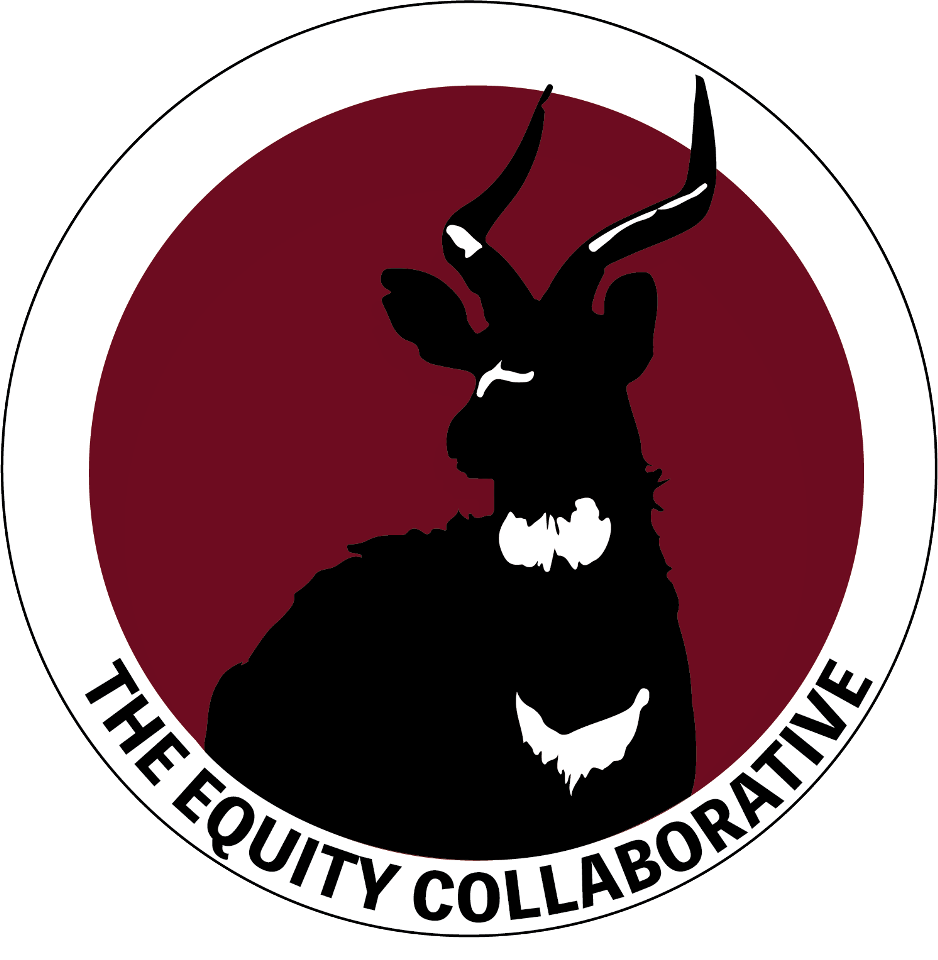 The Equity Collaborative Logo