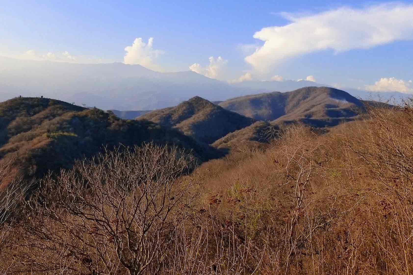 10 tesoros únicos del Bosque seco de Guatemala