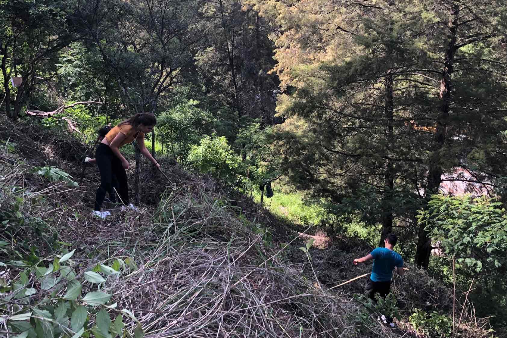 UVG promueve un plan de reforestación - foto2