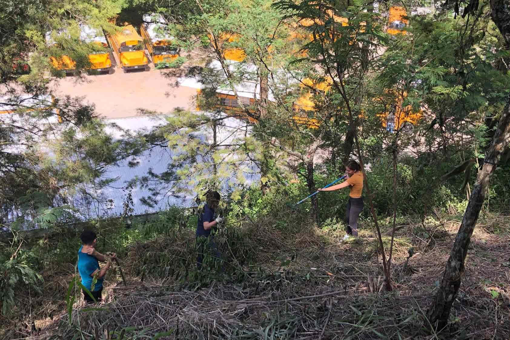 UVG promueve un plan de reforestación - foto3