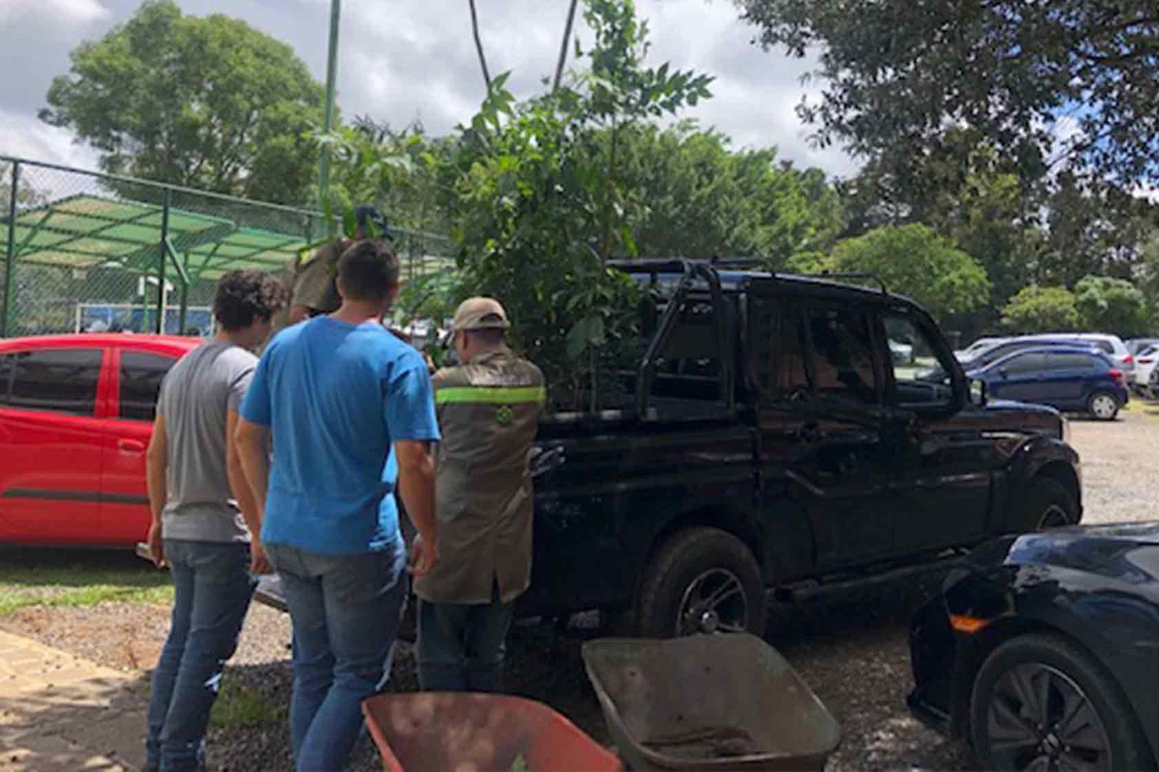 UVG promueve un plan de reforestación - foto5