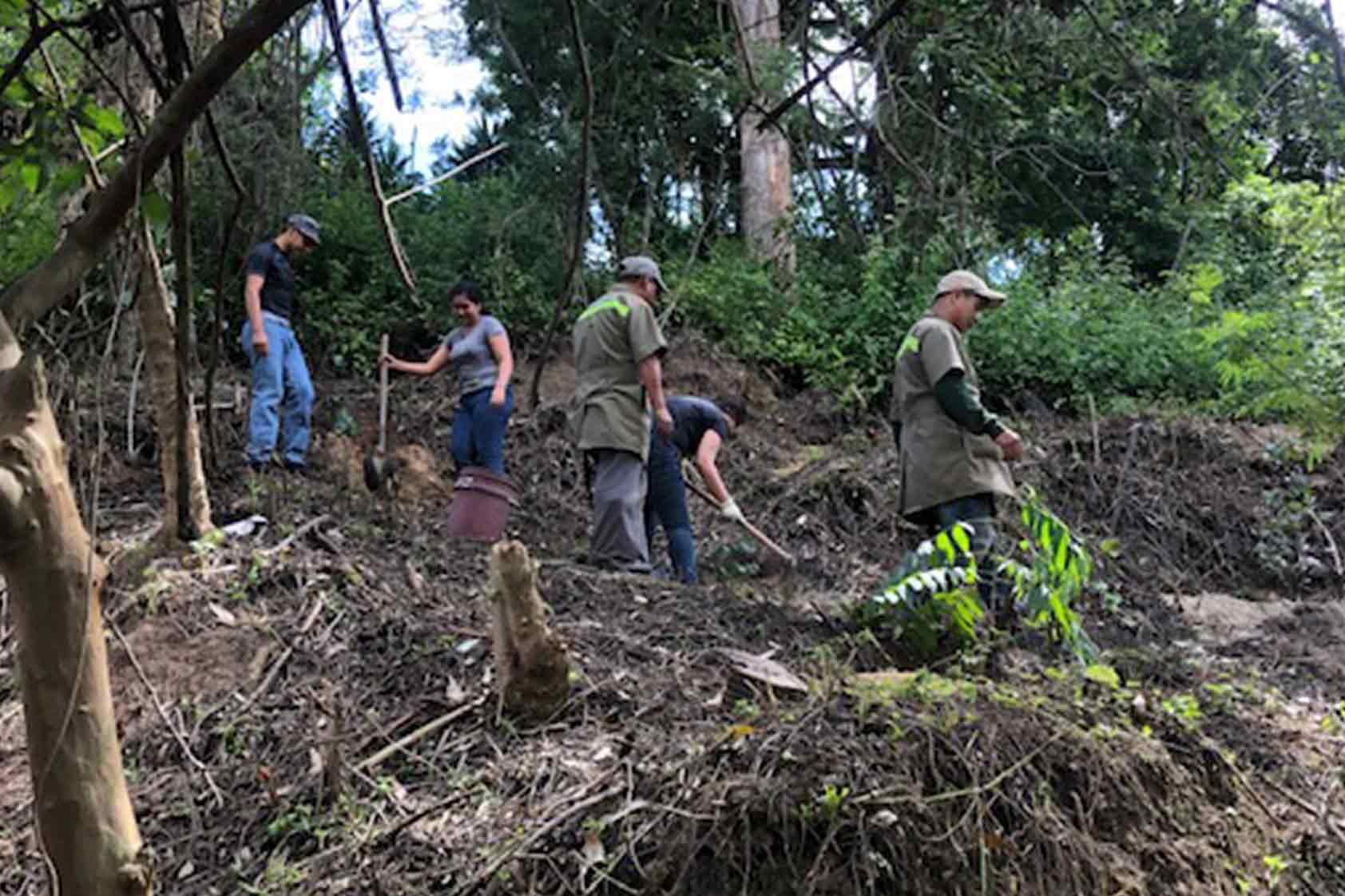 UVG promueve un plan de reforestación - foto7