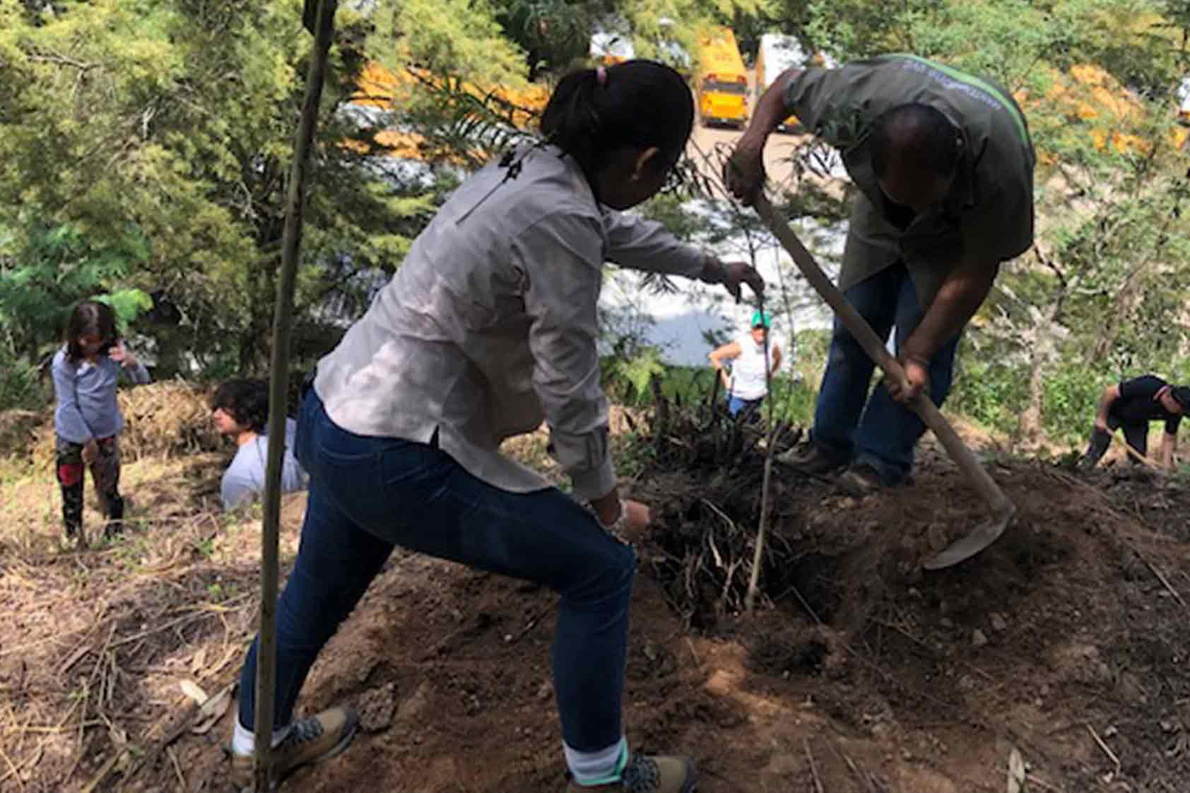 UVG promueve un plan de reforestación - foto8