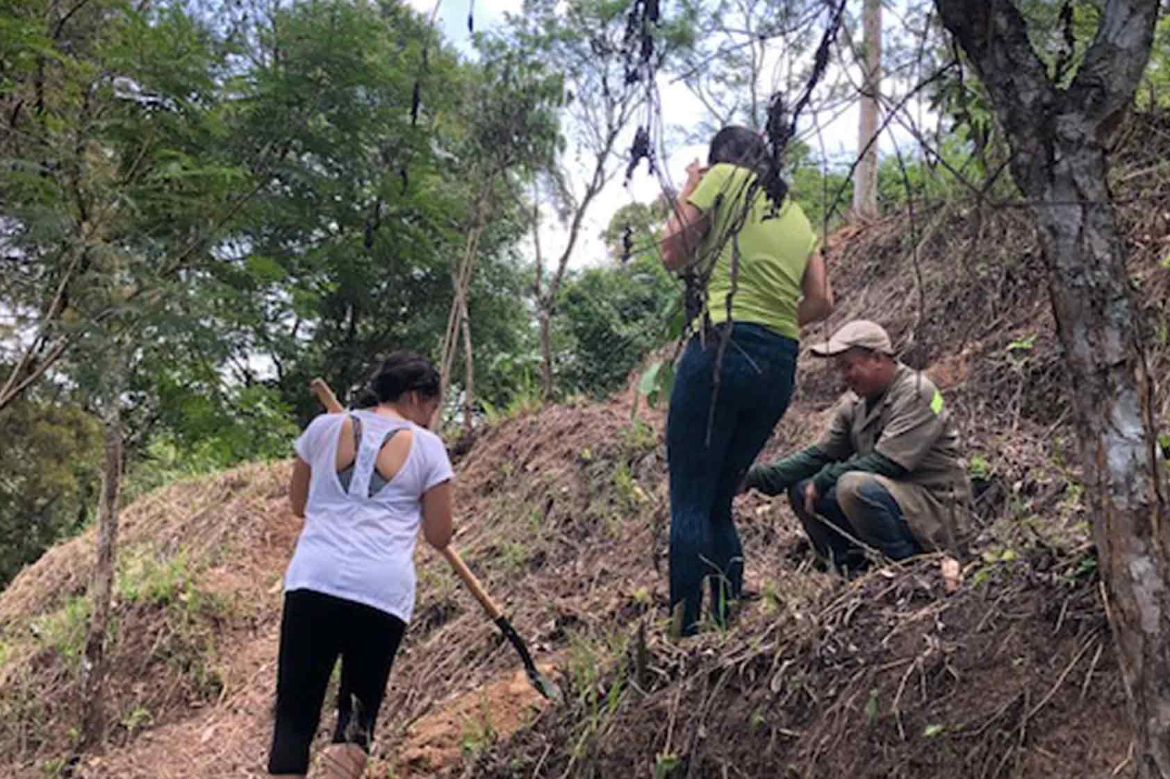 UVG promueve un plan de reforestación - foto9
