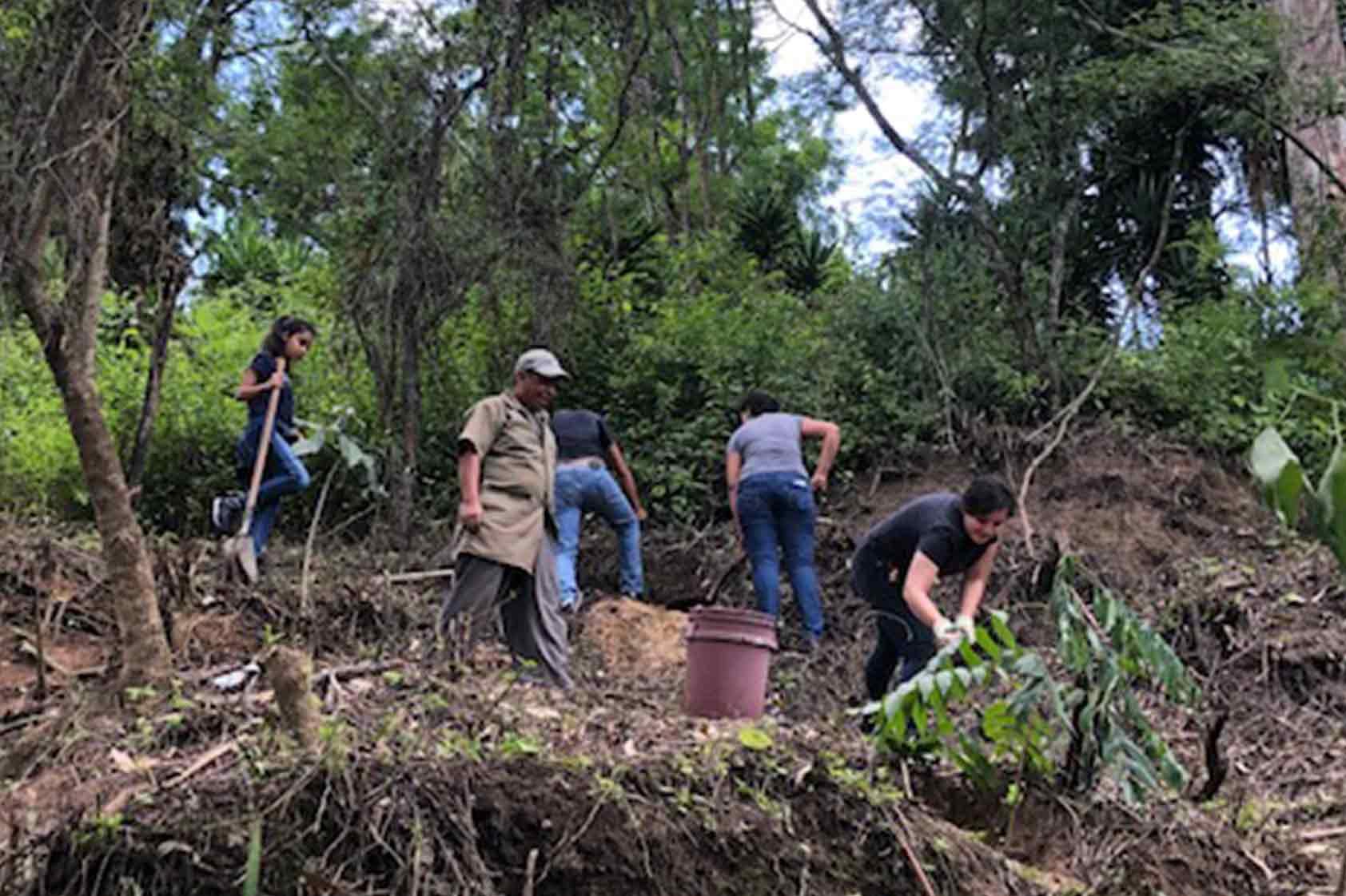 UVG promueve un plan de reforestación - foto10