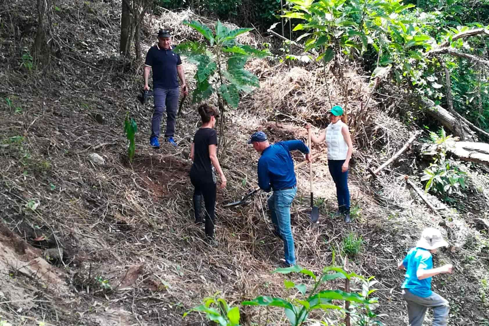 UVG promueve un plan de reforestación - foto13
