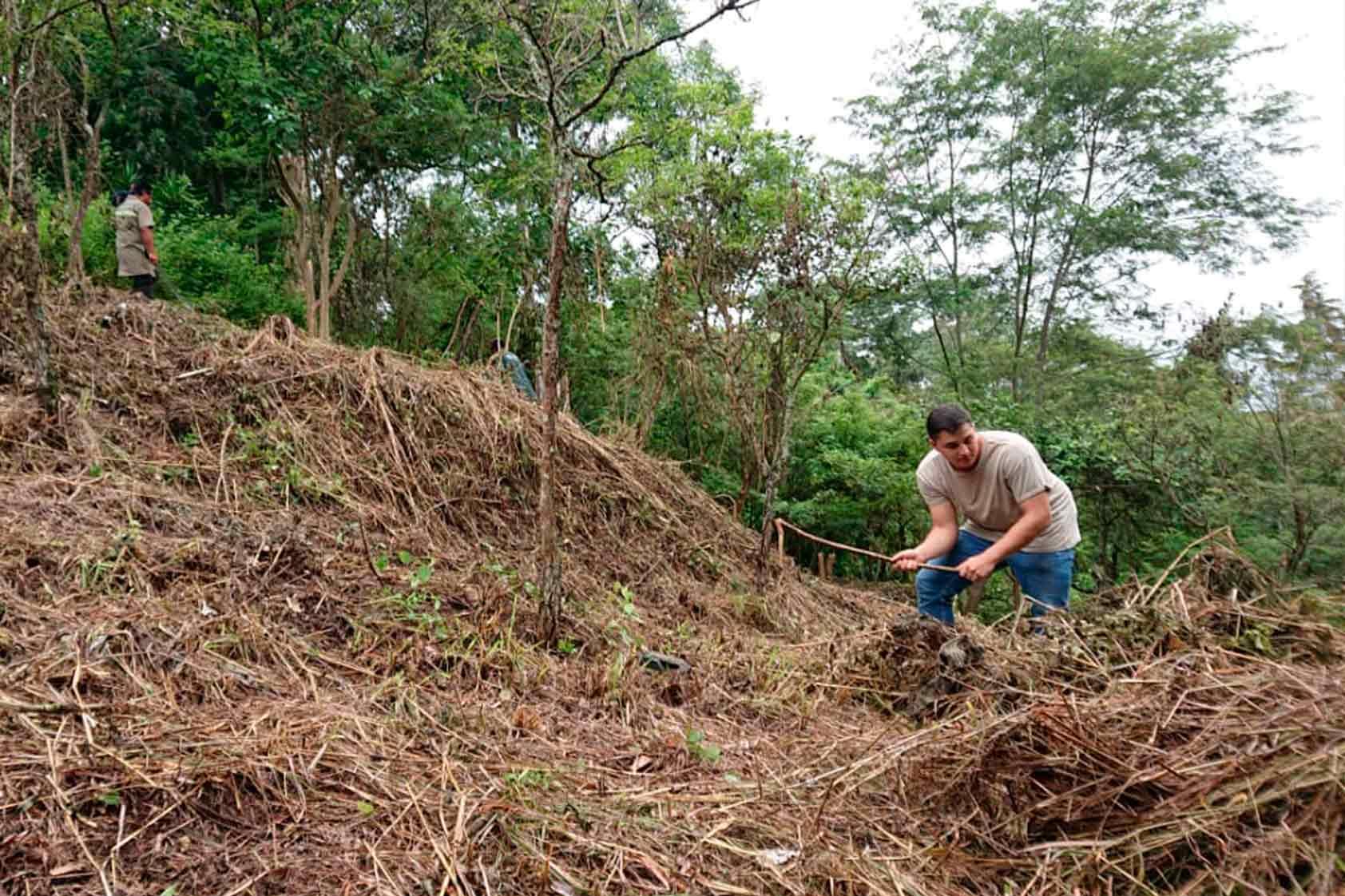 UVG promueve un plan de reforestación - foto14