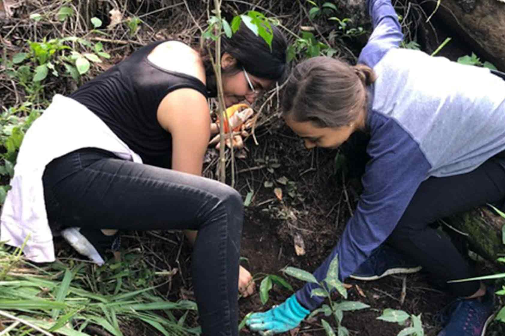 ¡Continúa la ejecución del plan de reforestación de UVG!