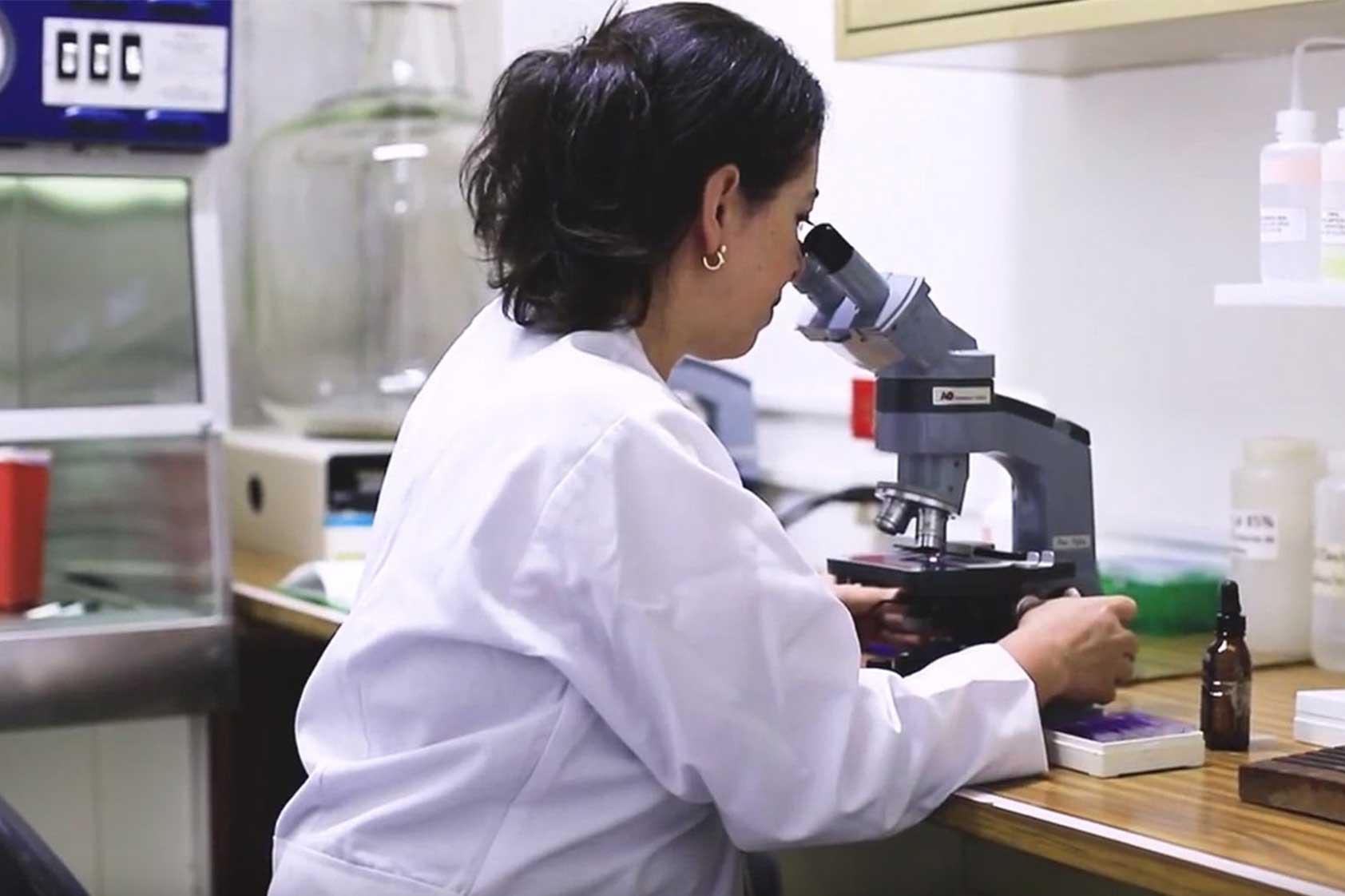 Clínica Móvil One Heath: un emprendimiento social para el tratamiento de Leishmaniasis