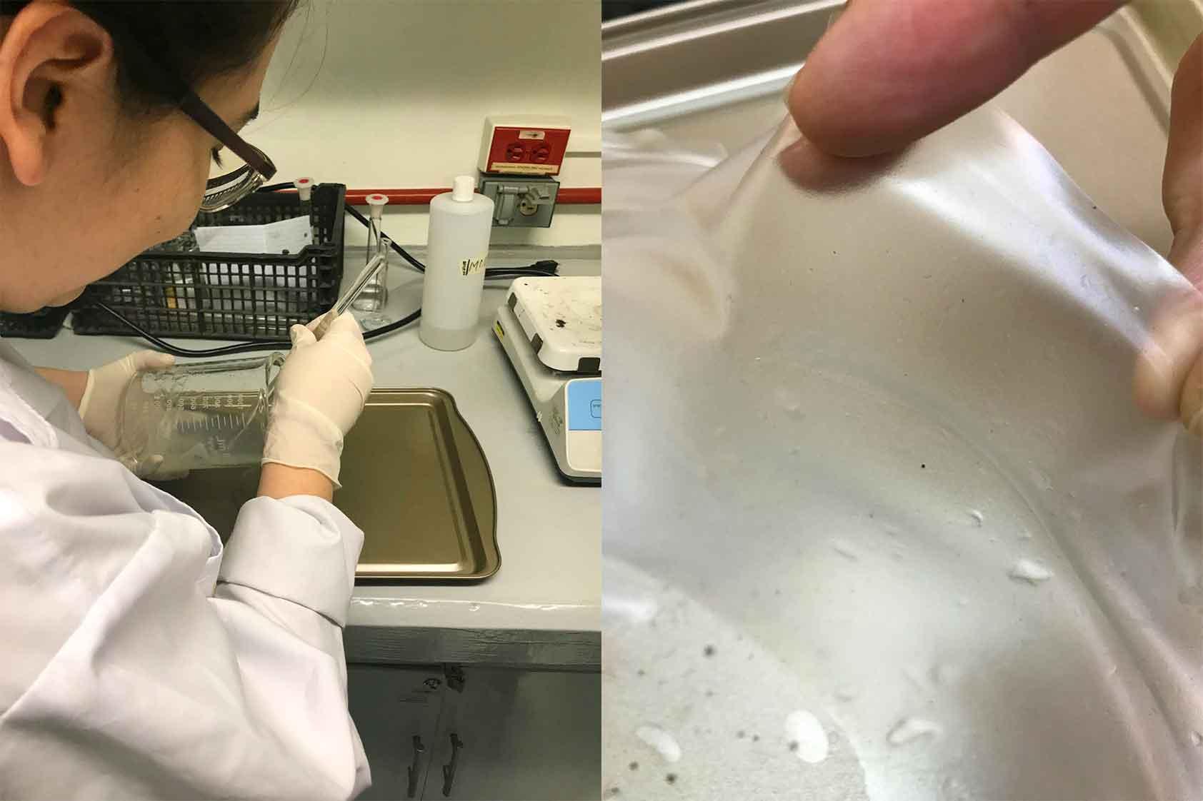 ¿Qué es la biodegradabilidad de los plásticos?