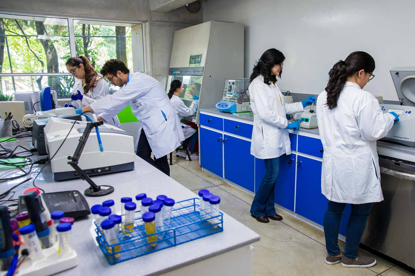 Biotecnología Molecular y Bioquímica y Microbiología: dos carreras que le apuestan a la innovación abierta