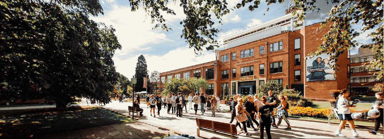 vac-global-education-university-in-new-zealand