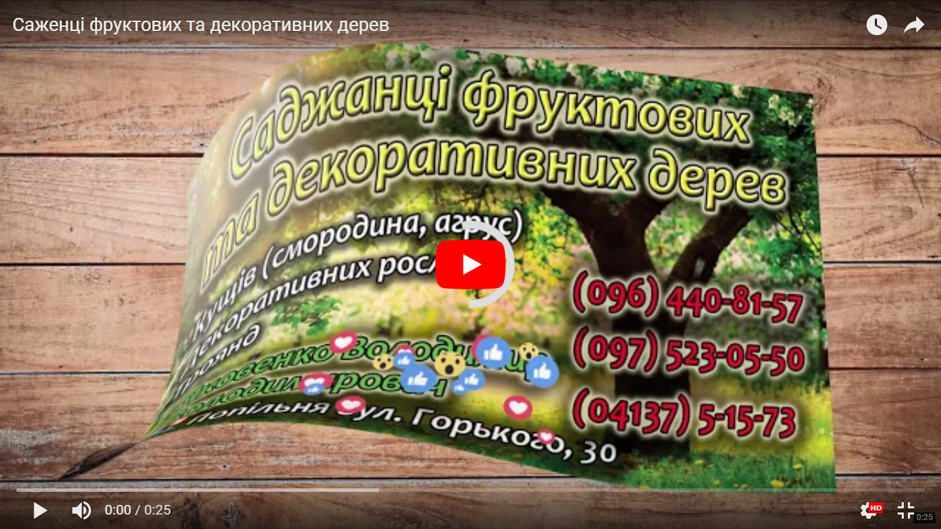 Відеовізитівка на замовлення. Приклад Саженці фруктових та декоративних дерев