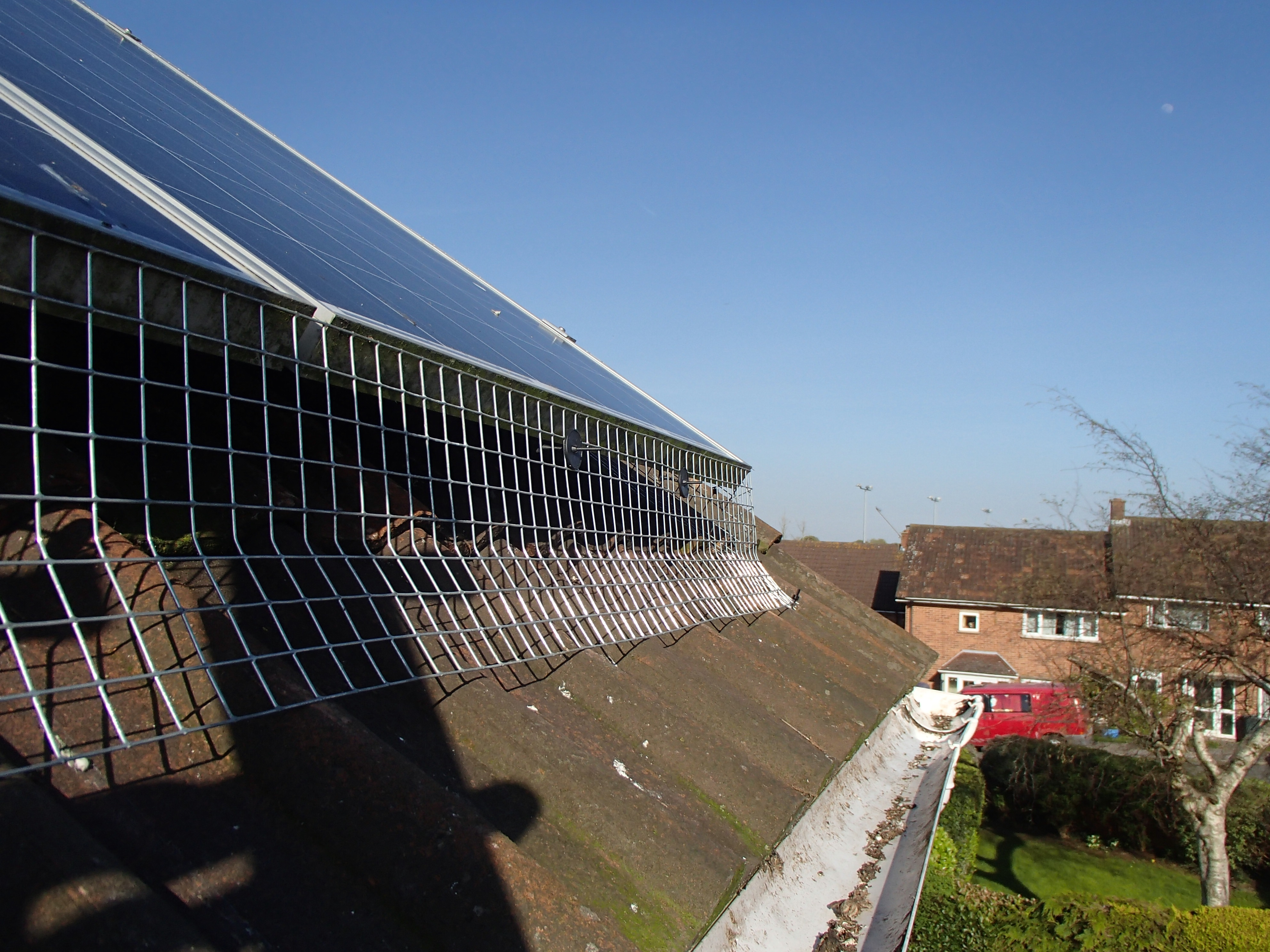 proofing solar panels from pigeons_5