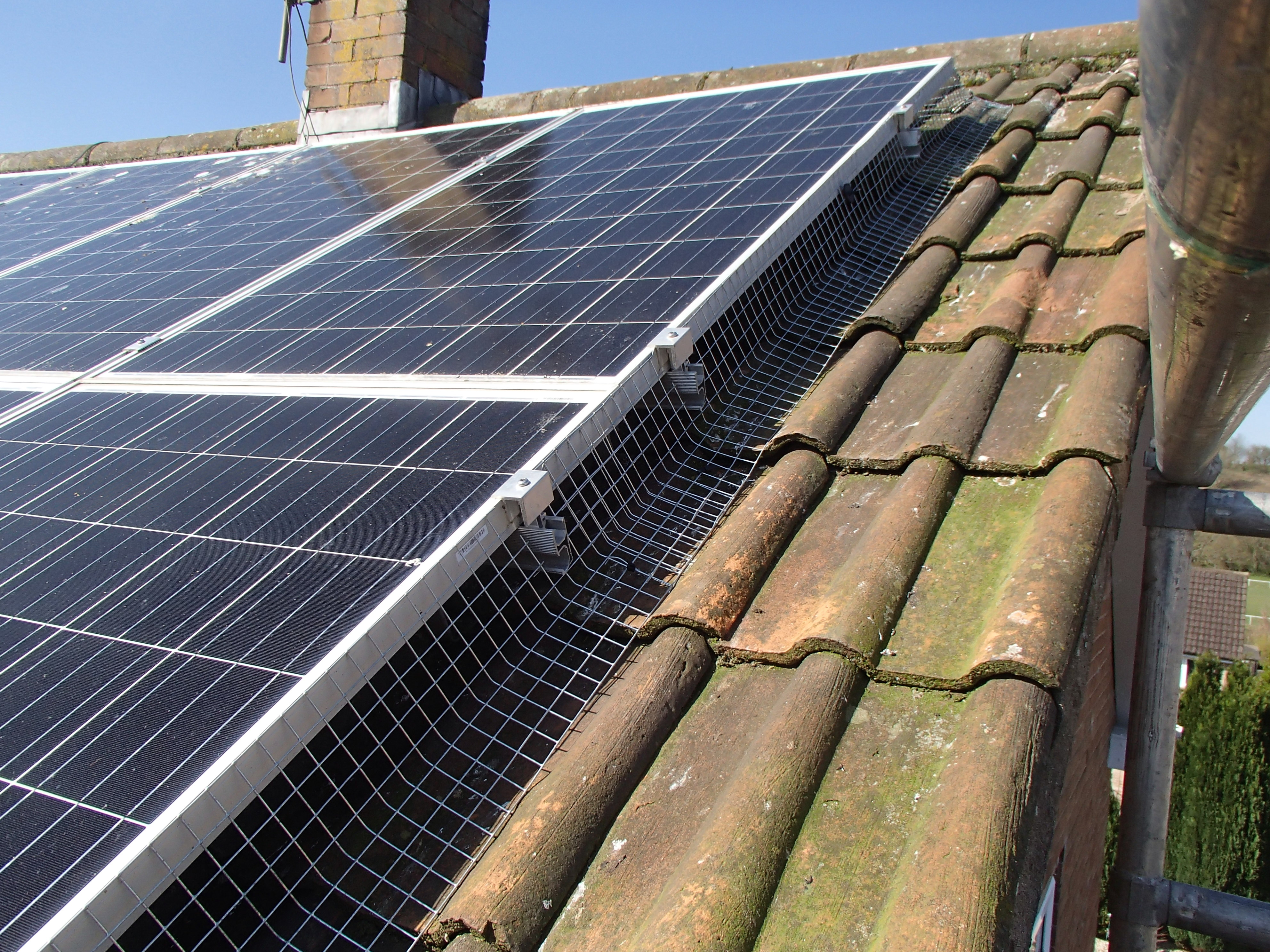 proofing solar panels from pigeons_2