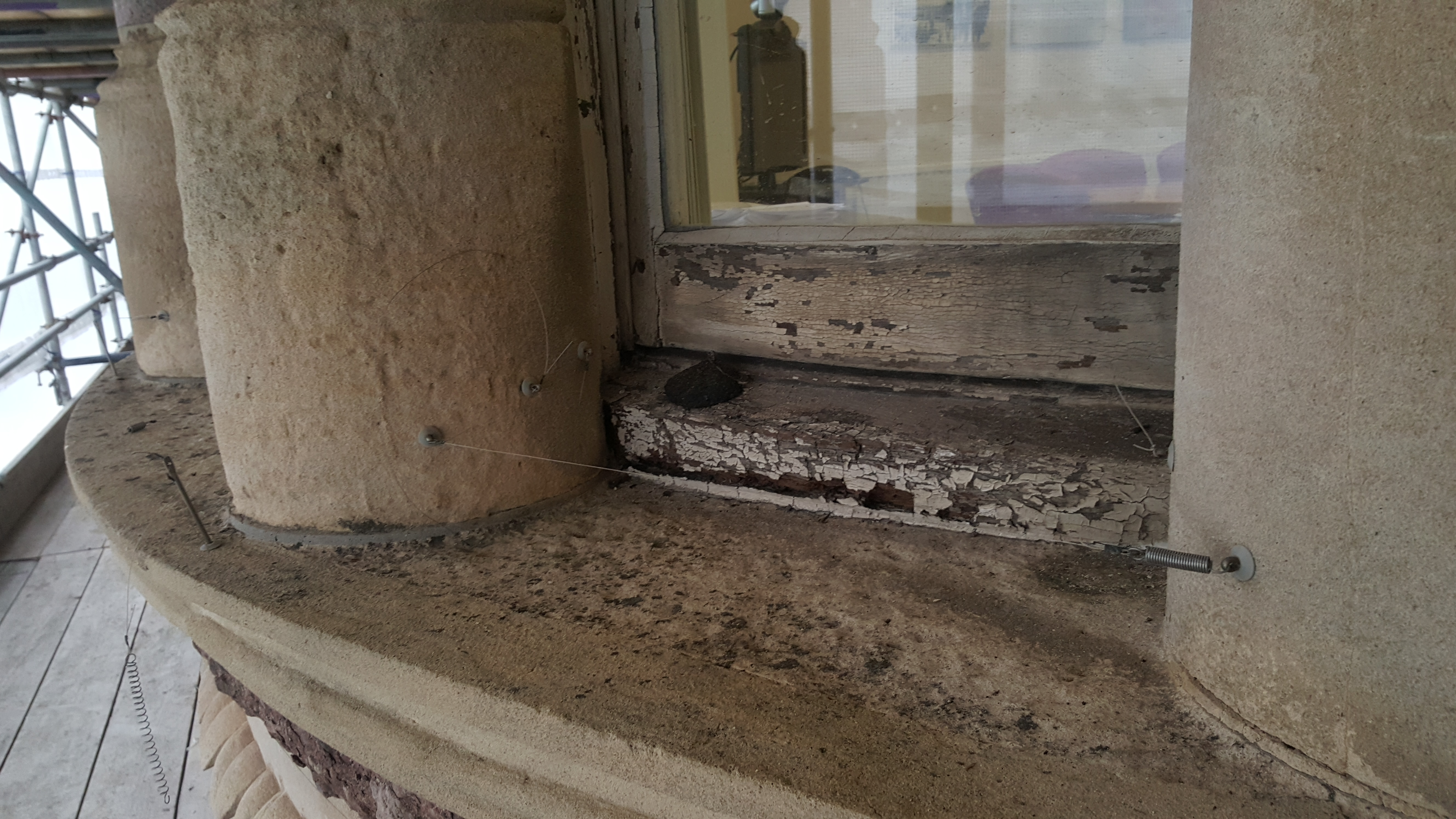 Pigeon Proofing 150916 – Rise 3