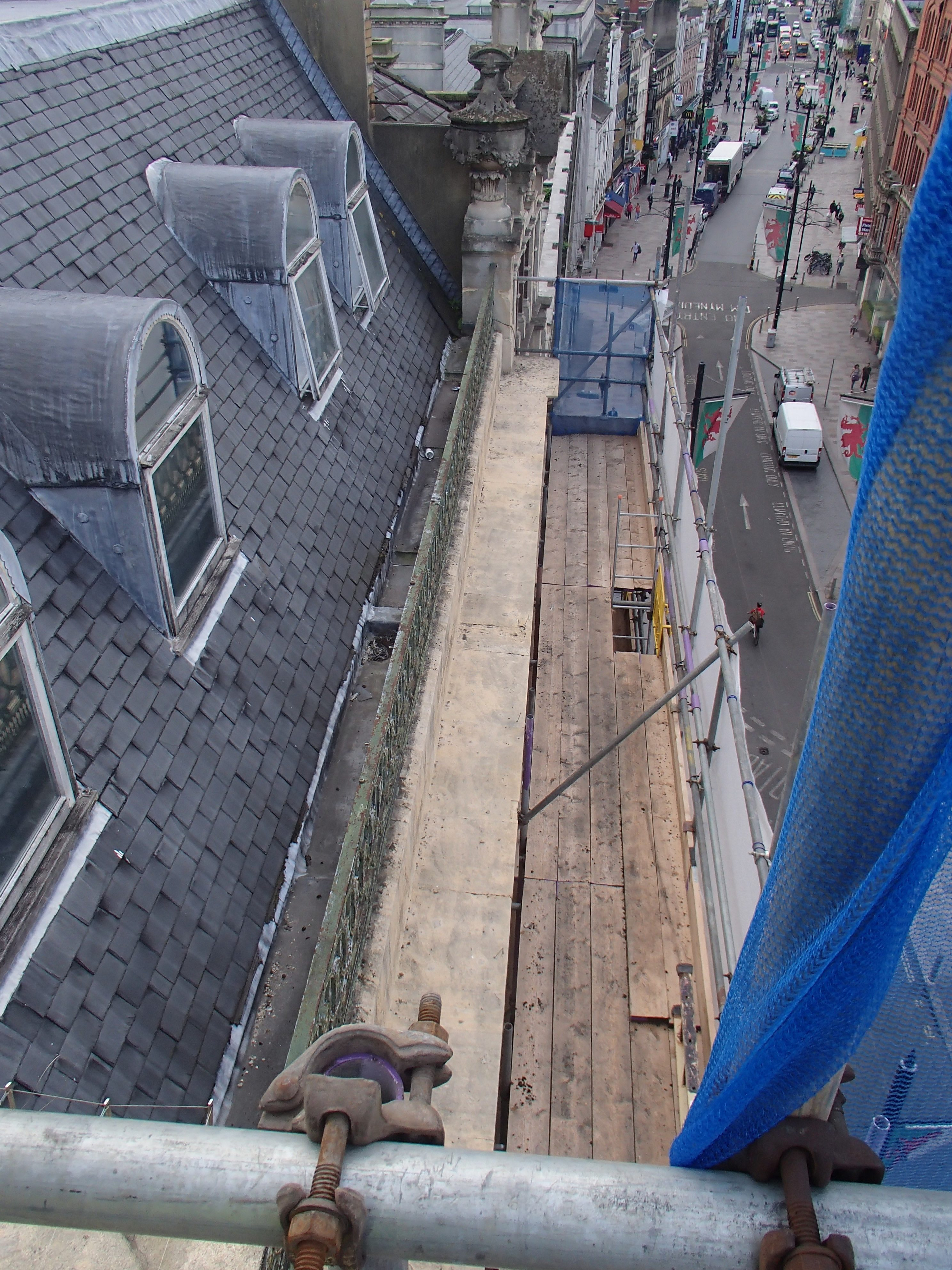 Pigeon Proofing 150916 – Rise 10