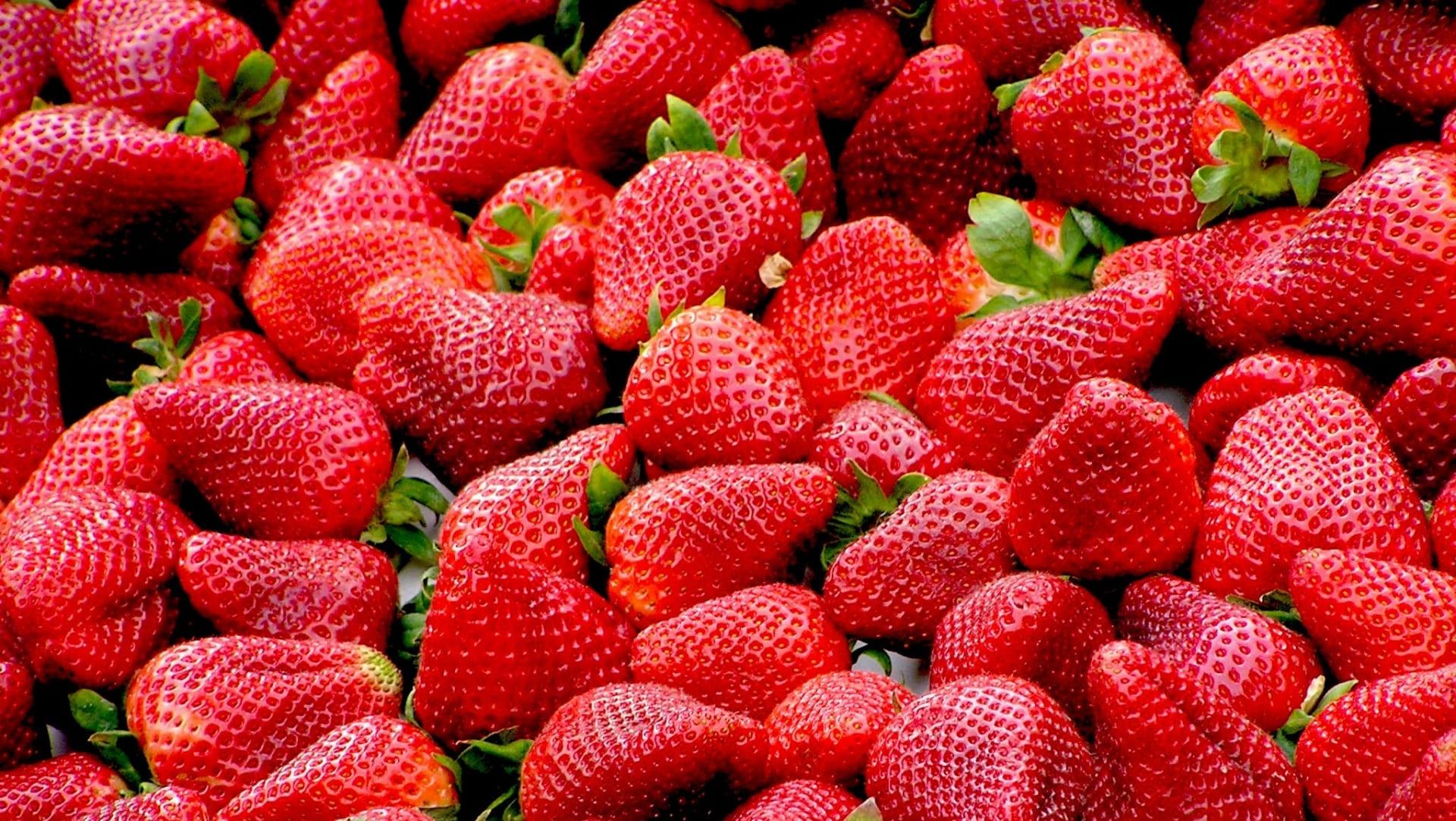 Valrhona.com-cahier-tendances-autour-des-fraises