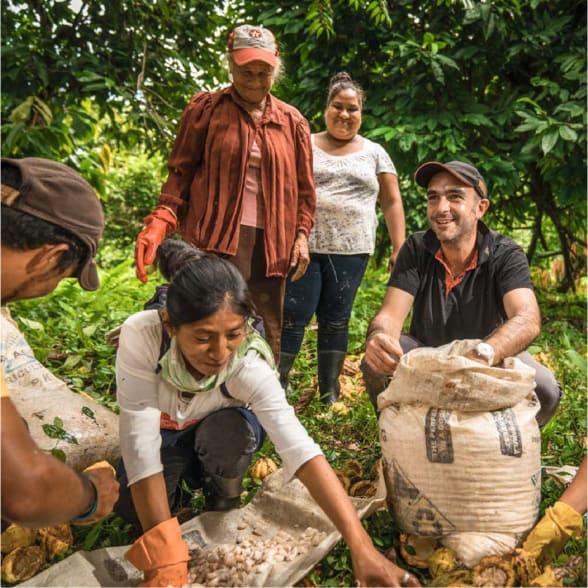 Valrhona.com-live-long-cacao-exemple-partenariats