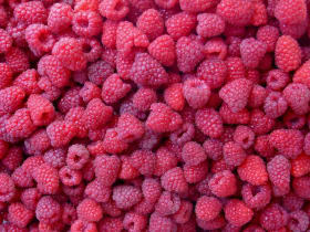 Valrhona.com-Seasonal Flavors - A spotlight on raspberries