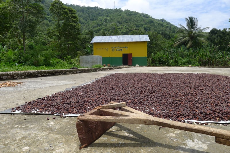 Valrhona.com-Agroforesterie-Haiti