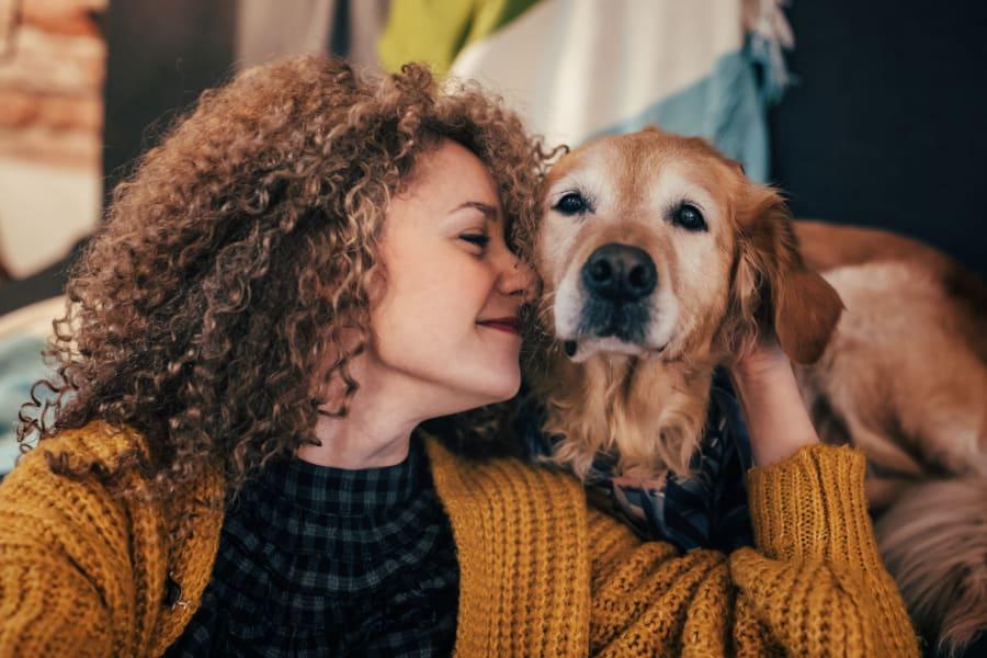 An owner pets her golden retriever