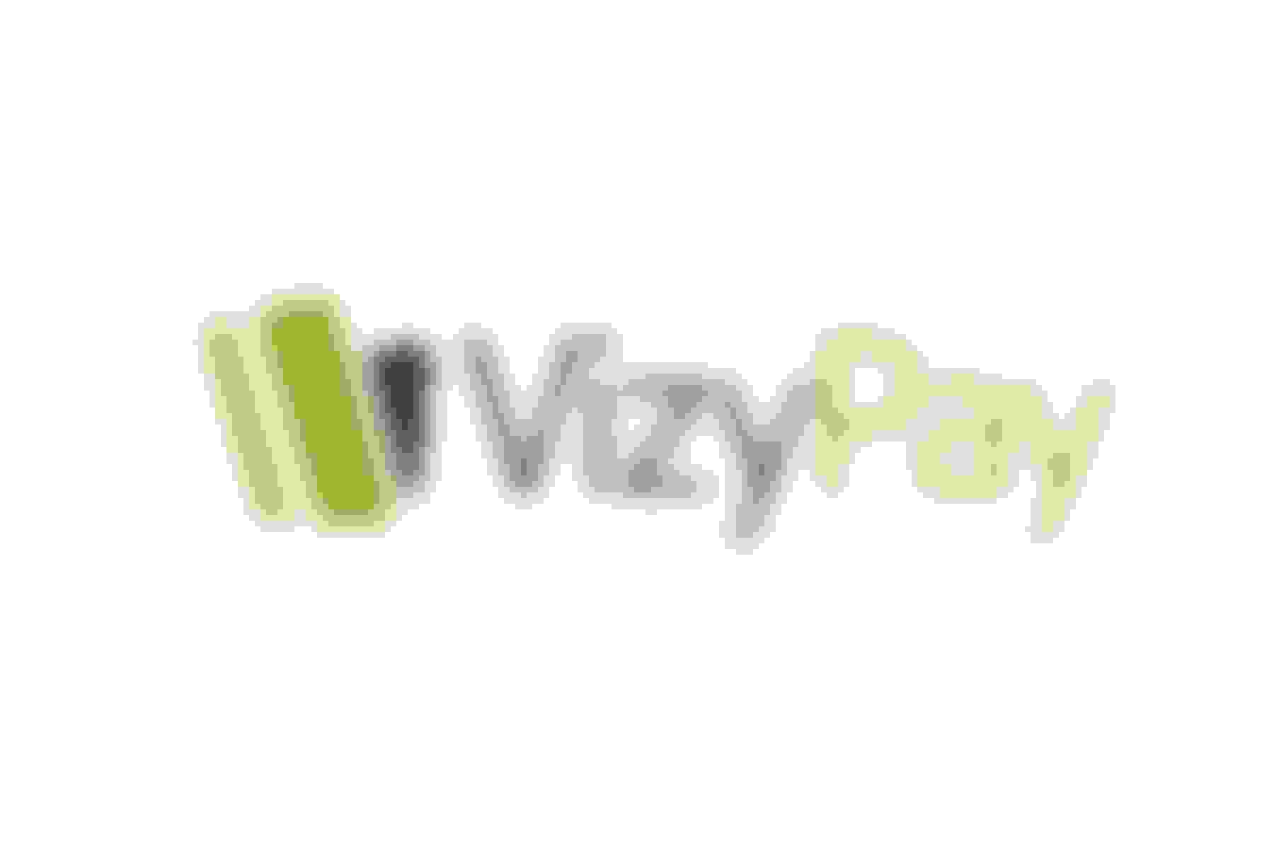 VizyPay offers simplified credit card processing services