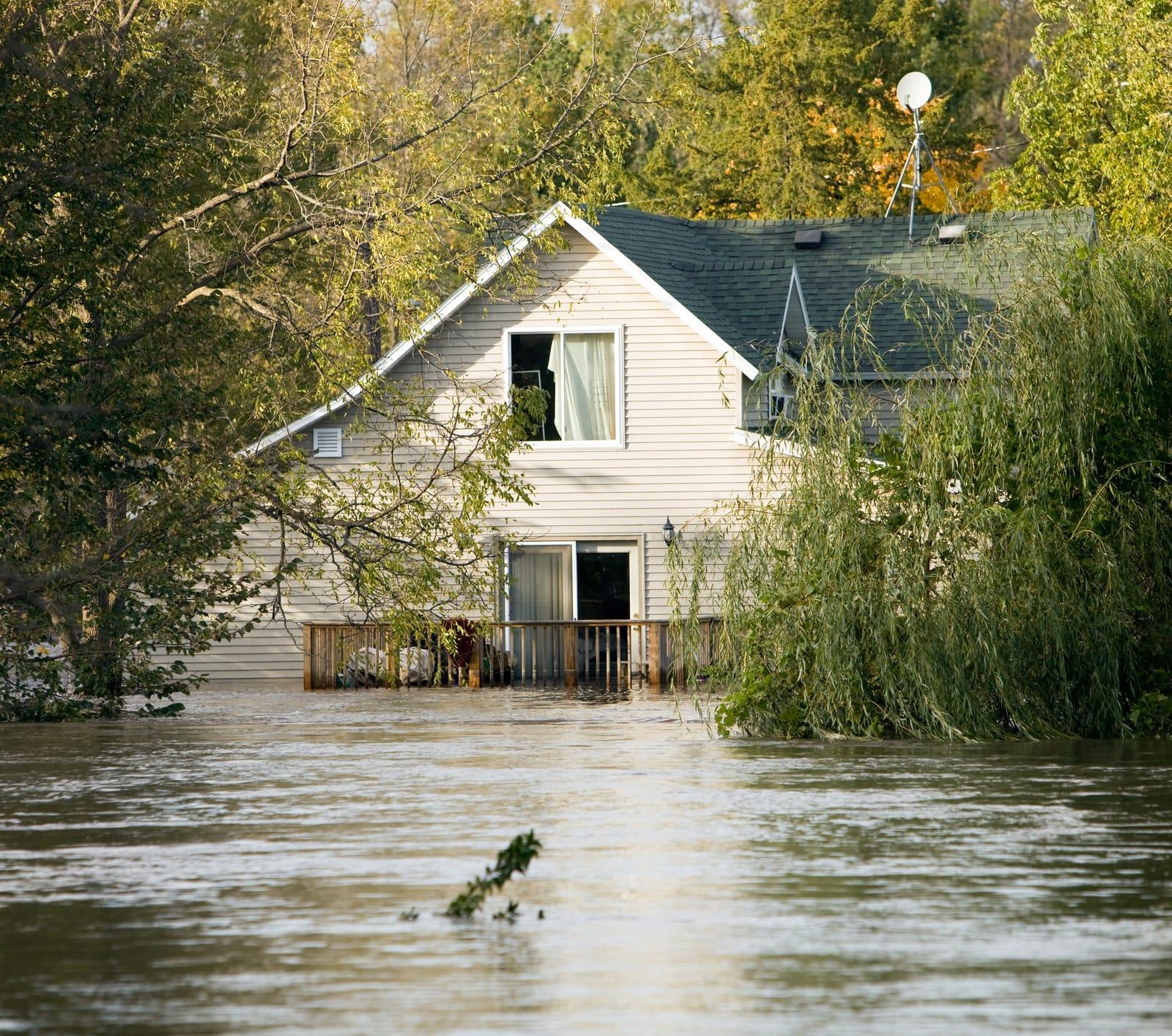 Average Cost of Flood Insurance 2019 - ValuePenguin