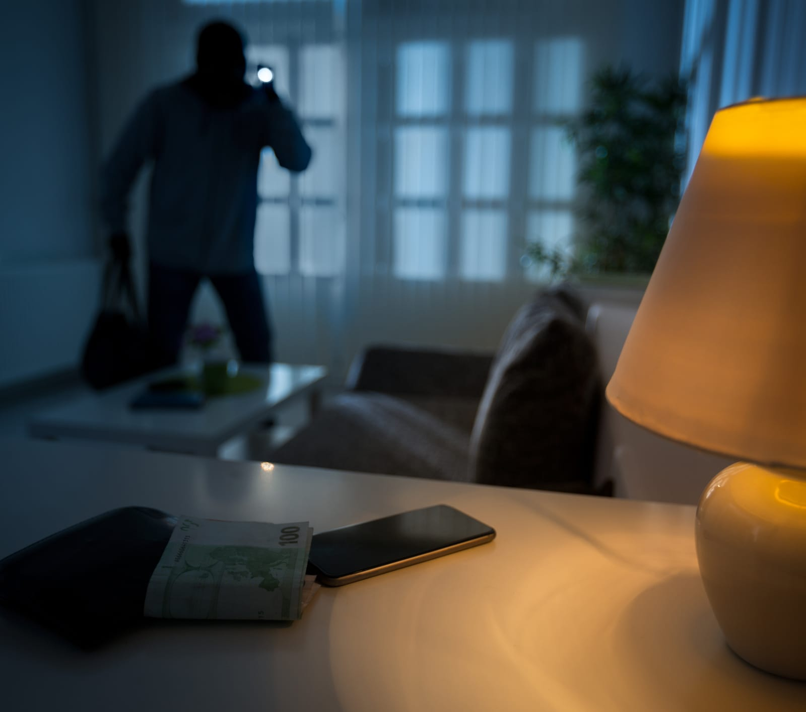 Does Homeowners Insurance Cover Theft? - ValuePenguin