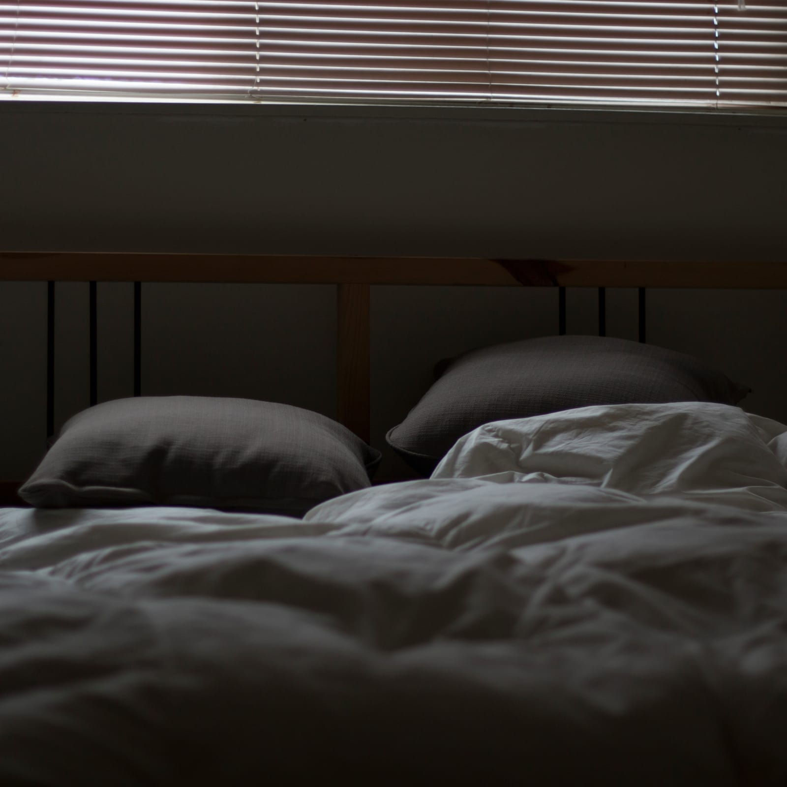 Does Renters Insurance Cover Bed Bugs Valuepenguin