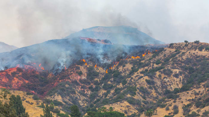Photo of wildfire in California