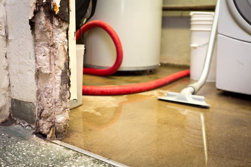 does homeowners insurance cover flooded basement