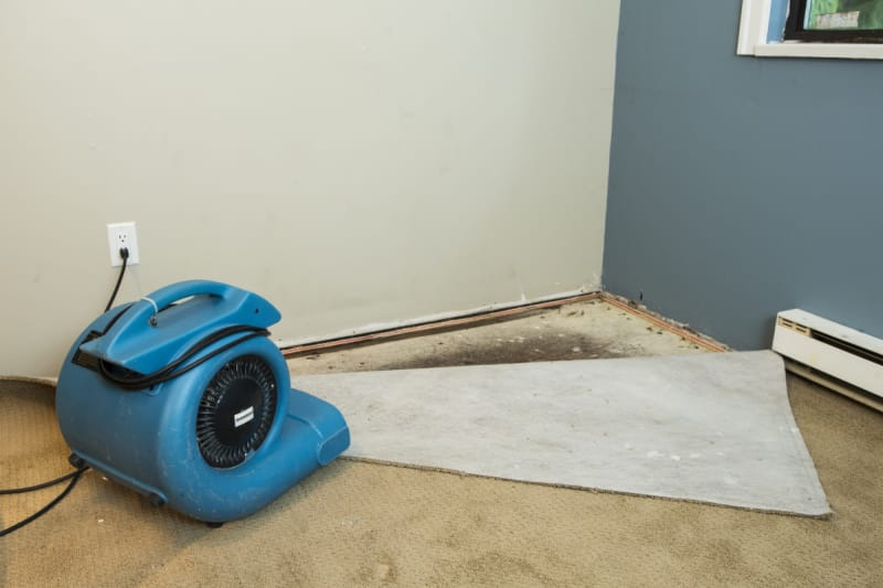 Does Homeowners Insurance Cover Plumbing And Pipe Leaks Valuepenguin