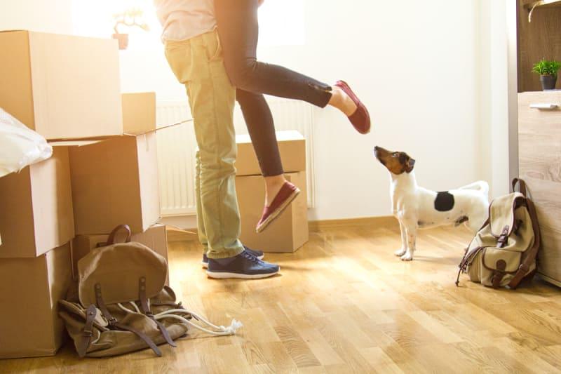 Obtaining Pet Liability Coverage Through Renters Insurance