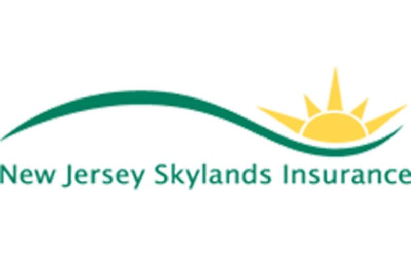 Affordable Auto Insurance >> New Jersey Skylands Insurance - ValuePenguin