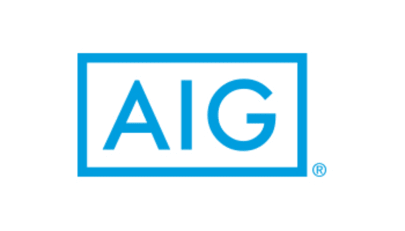 Image result for aig life insurance