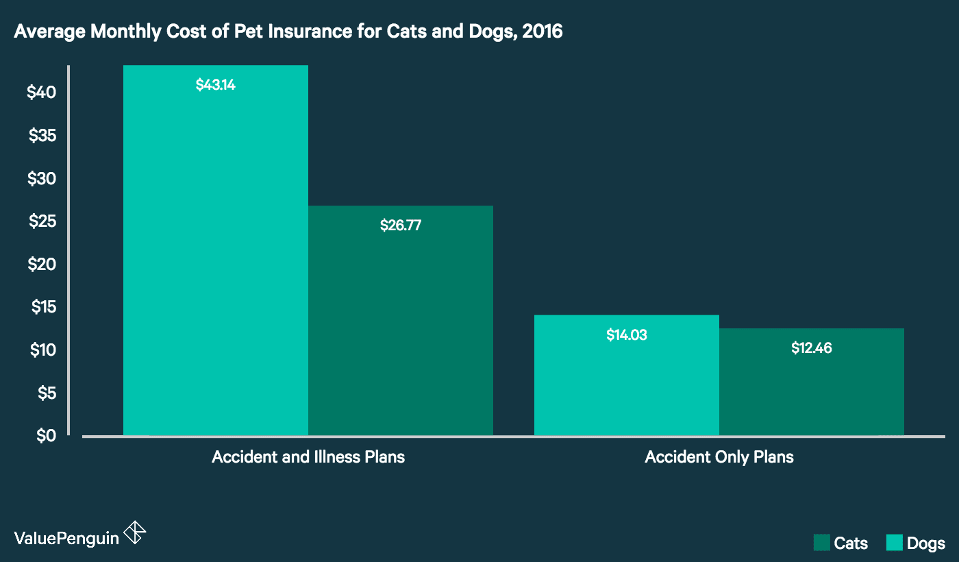 average cost of cialis without insurance