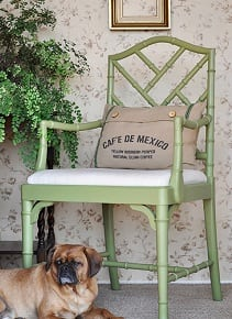 A green chair with a dog resting at the foot of the chair