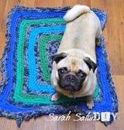 dog rest on carpet