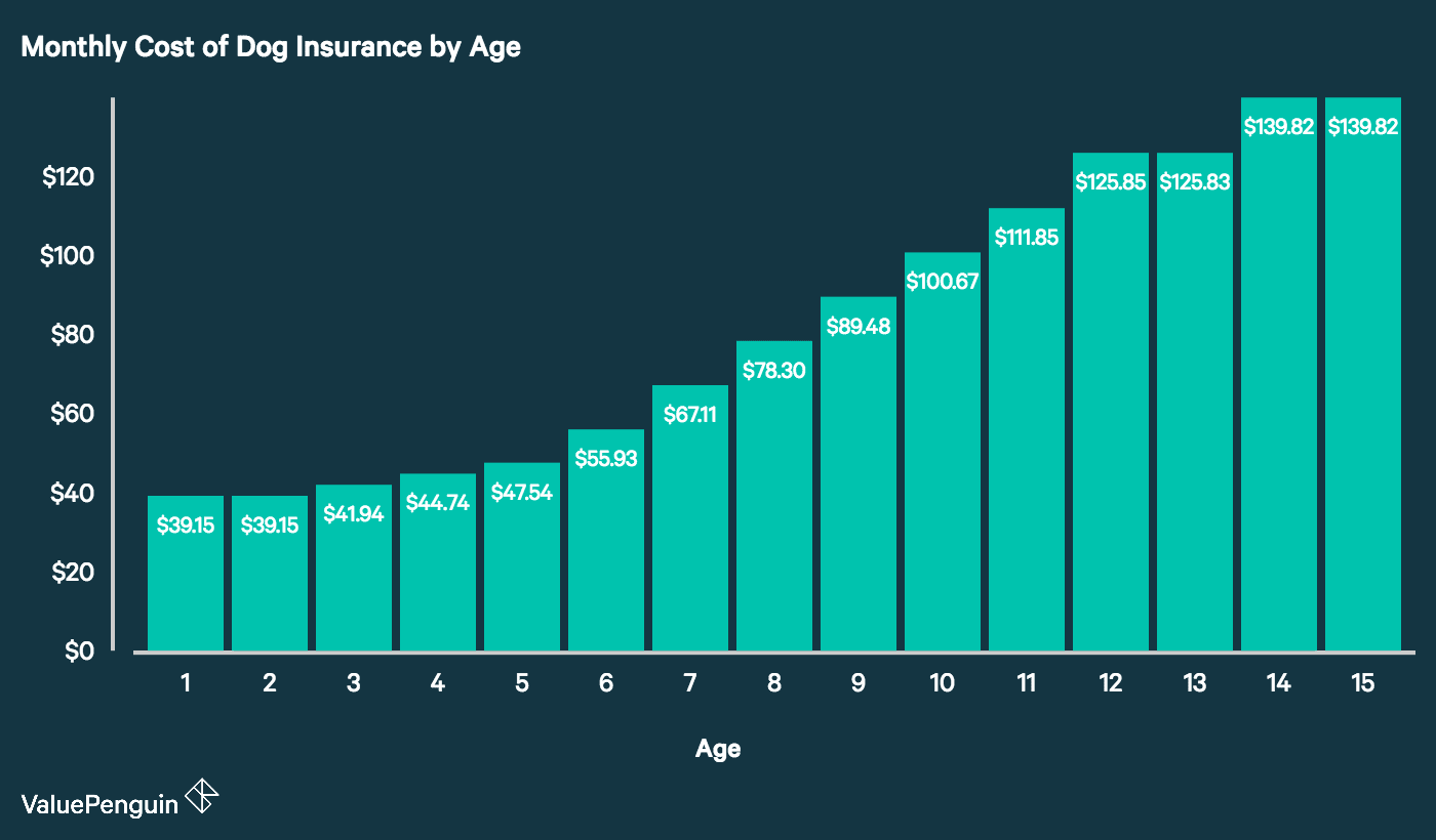 Graph showing how older dogs are much more costly to insure