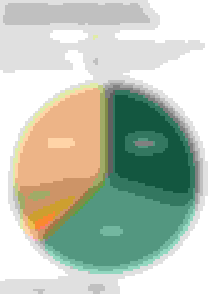 Pie chart of homeowners insurance property and liability claims, broken down by loss category