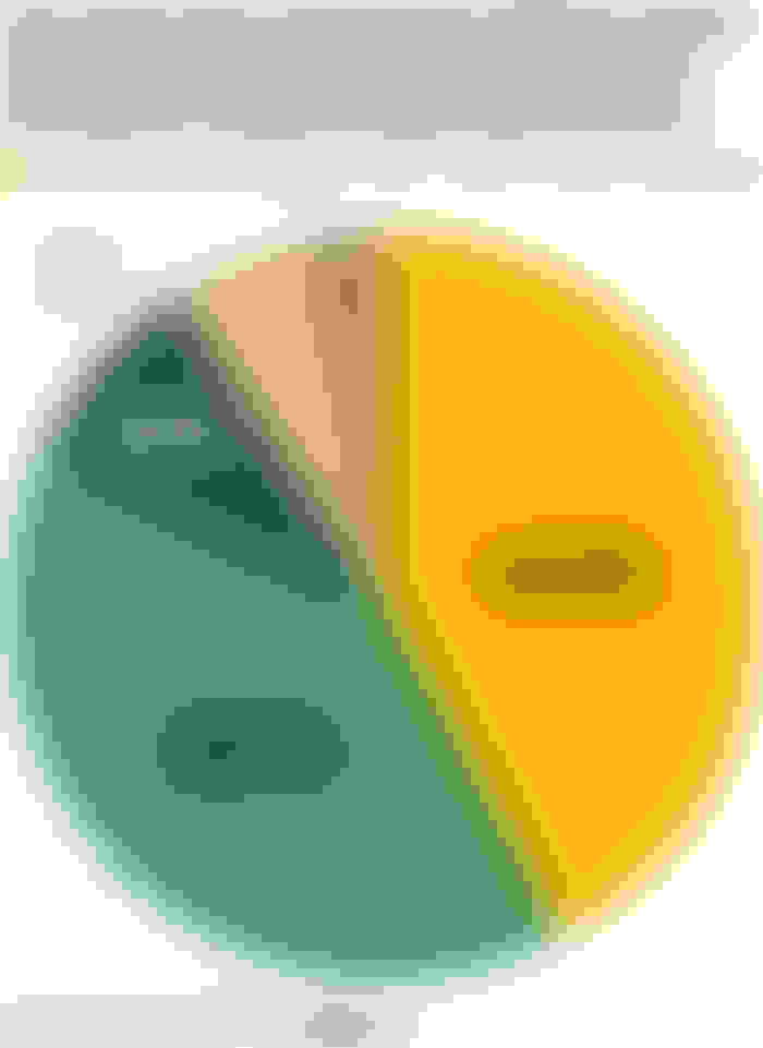 A pie chart showing how much respondents would spend on insurance policies focused on climate change-induced risks