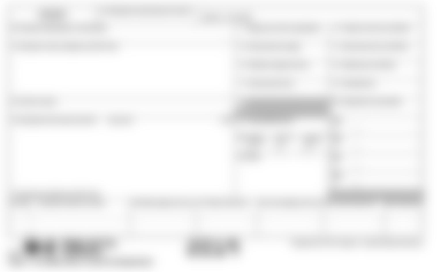 W-2 Blank Document