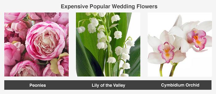 This image showcases a few popular wedding flower choices that tend to fall on the more expensive end of the range.