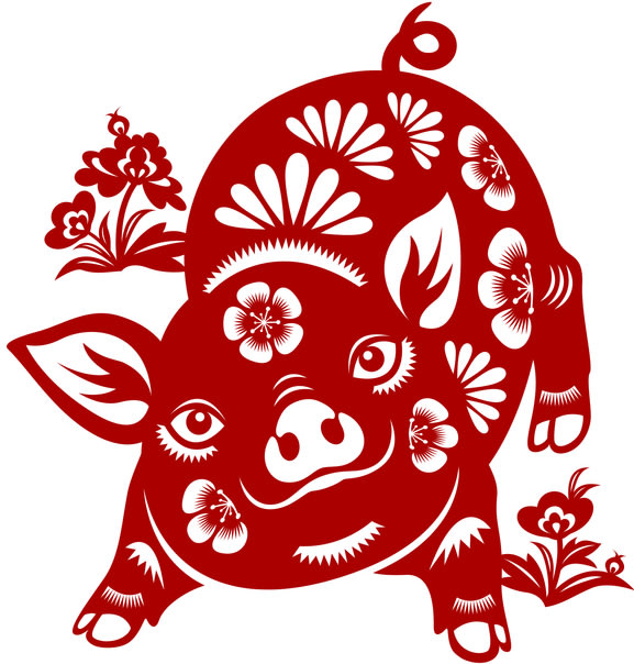 CNY financial horoscope prediction 2021 - Pig
