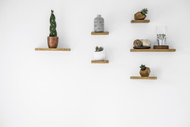 several wall shelves with plants