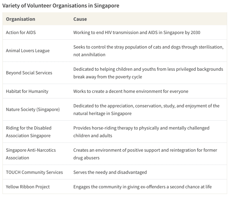 Table of several volunteer organisations in Singapore