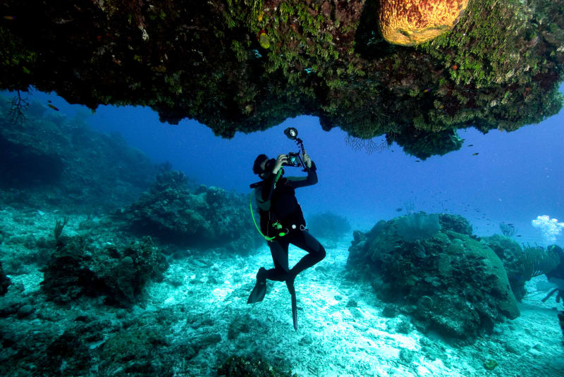 Singapore is near the Coral Triangle, which is known for having some of the world's best dive spots
